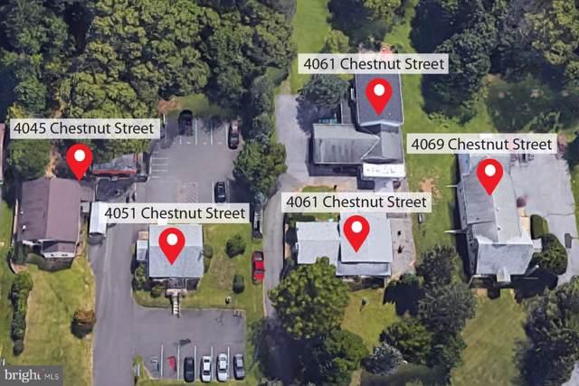 Chestnut Street, EMMAUS, PA 18049 (#PALH112952) :: Bob Lucido Team of Keller Williams Integrity