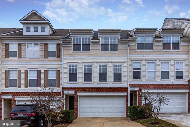 8203 Glade Bank Drive, MANASSAS, VA 20111 (#VAPW482810) :: The Speicher Group of Long & Foster Real Estate