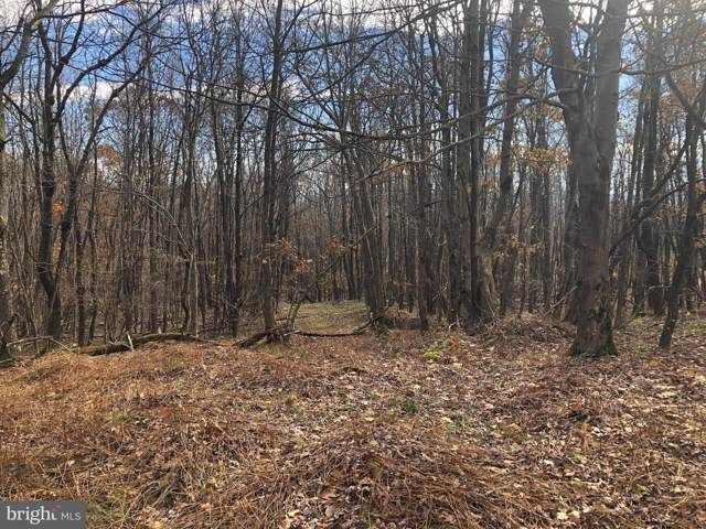Lot 164 Shawnee View Road, CENTRAL CITY, PA 15926 (#PASS100636) :: ExecuHome Realty