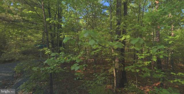 Lot 20 Sugar Maple Lane, GERRARDSTOWN, WV 25420 (#WVBE172890) :: Keller Williams Pat Hiban Real Estate Group