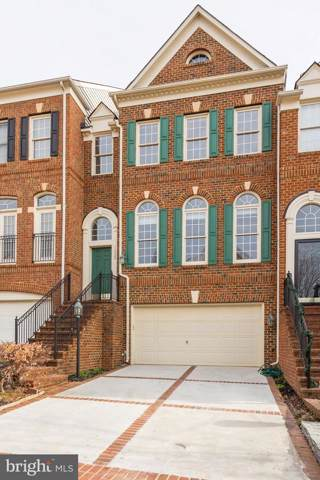 18524 Perdido Bay Terrace, LEESBURG, VA 20176 (#VALO398822) :: The Redux Group
