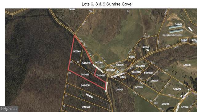 Lower Cove Run Road, MATHIAS, WV 26812 (#WVHD105642) :: The Redux Group