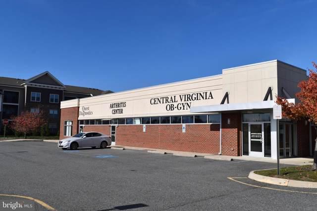 4541 Spotsylvania Parkway, FREDERICKSBURG, VA 22408 (#VASP217758) :: Homes to Heart Group