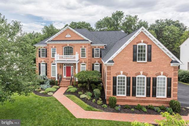42638 Trappe Rock Court, ASHBURN, VA 20148 (#VALO398946) :: Shamrock Realty Group, Inc
