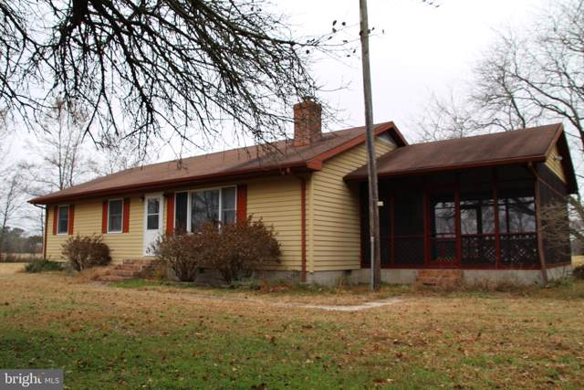 1239 Buck Harbor Road, POCOMOKE CITY, MD 21851 (#MDWO110544) :: The Daniel Register Group