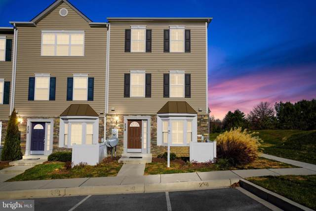 6515 Dundee Drive #238, ELDERSBURG, MD 21784 (#MDCR193248) :: Great Falls Great Homes