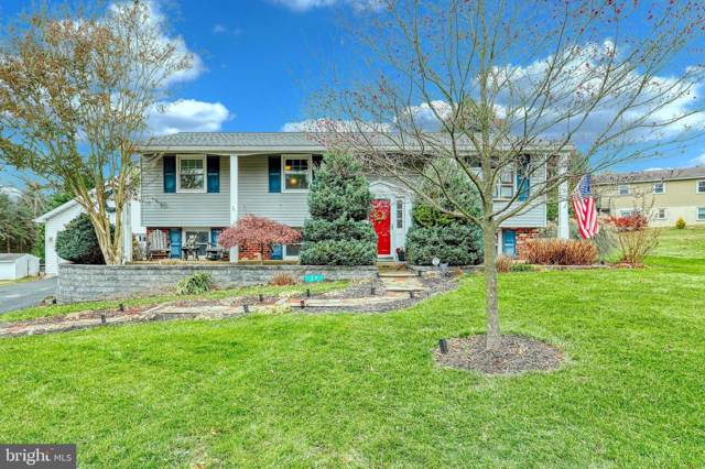 29 Independence Drive, NEW FREEDOM, PA 17349 (#PAYK128978) :: Teampete Realty Services, Inc