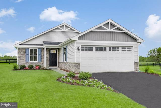 1005 Switchgrass Ct, BUNKER HILL, WV 25413 (#WVBE173040) :: The Miller Team