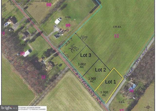 Lot 1 Canterbury Road, MILFORD, DE 19963 (#DEKT234212) :: RE/MAX Coast and Country