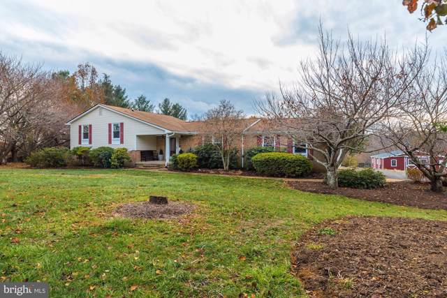 16793 Hillsboro Road, PURCELLVILLE, VA 20132 (#VALO399228) :: The Vashist Group