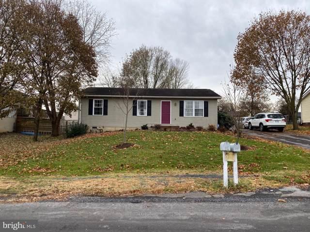 307 Swan Drive, MOUNT JACKSON, VA 22842 (#VASH117858) :: Keller Williams Pat Hiban Real Estate Group