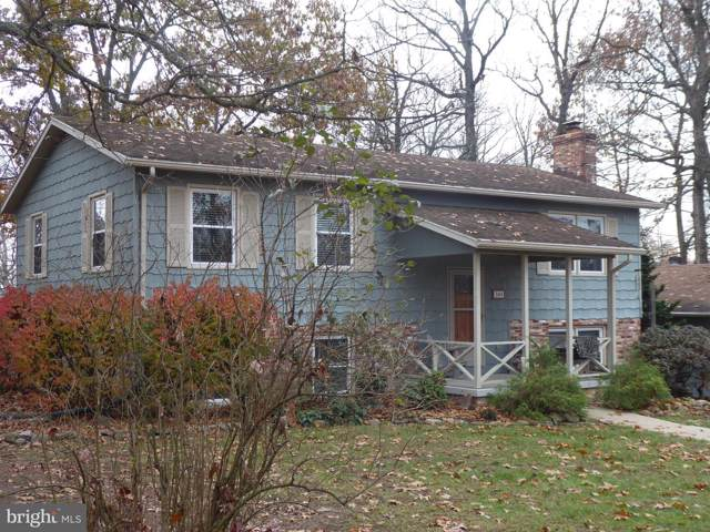 300 Hayneswood Lane, NEW MARKET, VA 22844 (#VASH117860) :: Keller Williams Pat Hiban Real Estate Group