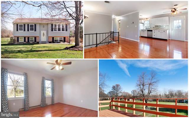 13022 Locust Level Road, GREENCASTLE, PA 17225 (#PAFL169898) :: The Licata Group/Keller Williams Realty