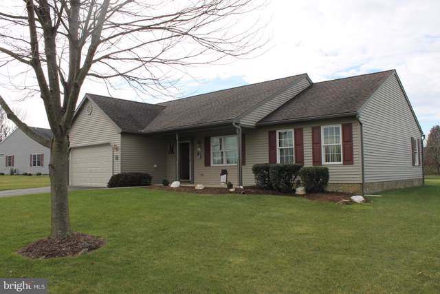 54 Scenic Drive, MYERSTOWN, PA 17067 (#PALN109976) :: Iron Valley Real Estate