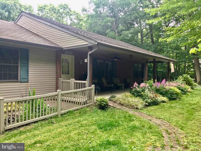 186 Lakewood Drive, PEQUEA, PA 17565 (#PALA144250) :: The Heather Neidlinger Team With Berkshire Hathaway HomeServices Homesale Realty