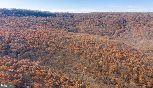 347 Crazy Horse Ridge, HEDGESVILLE, WV 25427 (#WVBE173142) :: Pearson Smith Realty