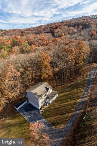 21 Heavens Tree Trail, STAR TANNERY, VA 22654 (#VASH117902) :: Keller Williams Pat Hiban Real Estate Group