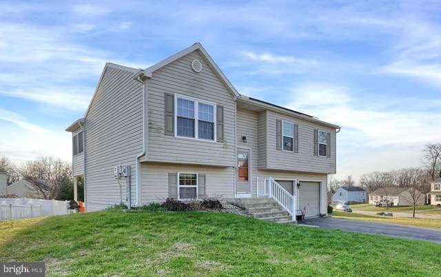 113 Overlook Drive, BAINBRIDGE, PA 17502 (#PALA144278) :: Viva the Life Properties
