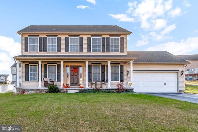74 Knobby Hook, HANOVER, PA 17331 (#PAYK129382) :: The Joy Daniels Real Estate Group