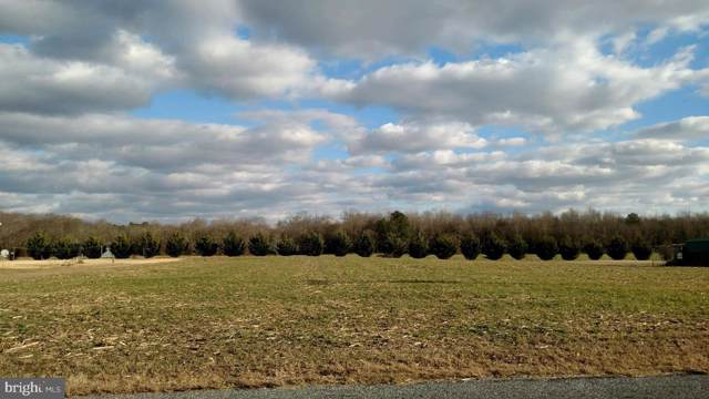 Double Fork Lot 3, GREENWOOD, DE 19950 (#DESU152312) :: ExecuHome Realty