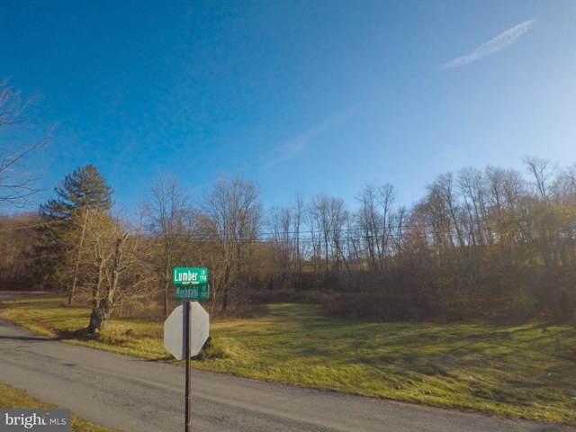 4 Lumber Lane, NEW RINGGOLD, PA 17960 (#PASK128882) :: Teampete Realty Services, Inc