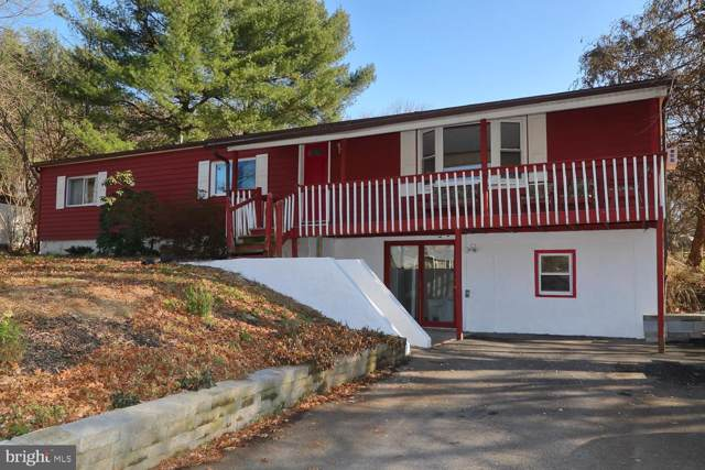 917 Holly Tree Road, MANHEIM, PA 17545 (#PALA144382) :: The Joy Daniels Real Estate Group