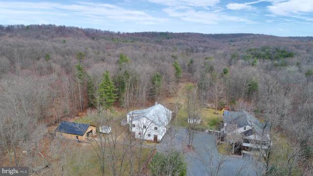 68 Shady Hill Lane, LOYSVILLE, PA 17047 (#PAPY101642) :: The Joy Daniels Real Estate Group