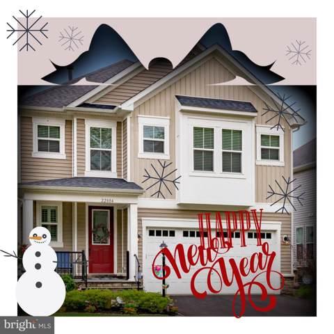 22804 Bubbling Brook Drive, BRAMBLETON, VA 20148 (#VALO399652) :: Dart Homes