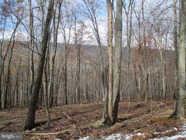 0 Seneca Trail, BERKELEY SPRINGS, WV 25411 (#WVMO116310) :: Hill Crest Realty