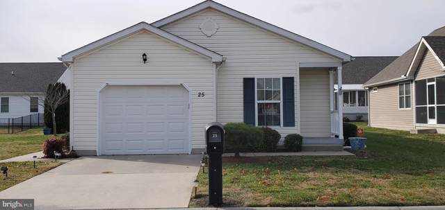 25 Claystone Drive, DOVER, DE 19901 (#DEKT234494) :: Viva the Life Properties
