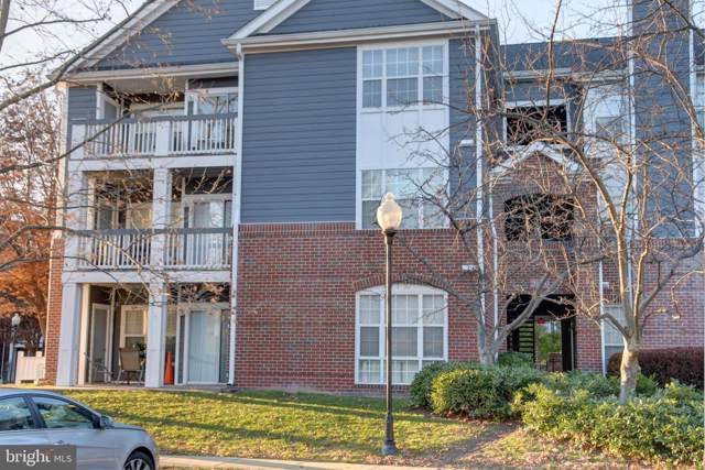 20330 Beechwood Terrace #102, ASHBURN, VA 20147 (#VALO399710) :: The Redux Group