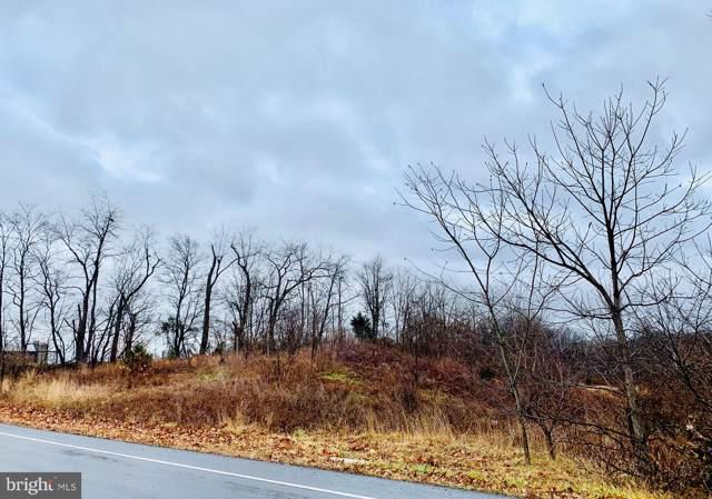 Route 225, ELIZABETHVILLE, PA 17023 (#PADA117334) :: Liz Hamberger Real Estate Team of KW Keystone Realty