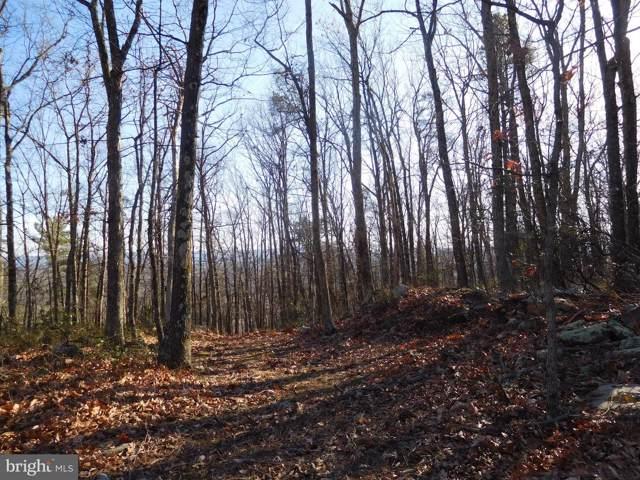 Pathfinder Lane, CAPON BRIDGE, WV 26711 (#WVHS113582) :: Hill Crest Realty