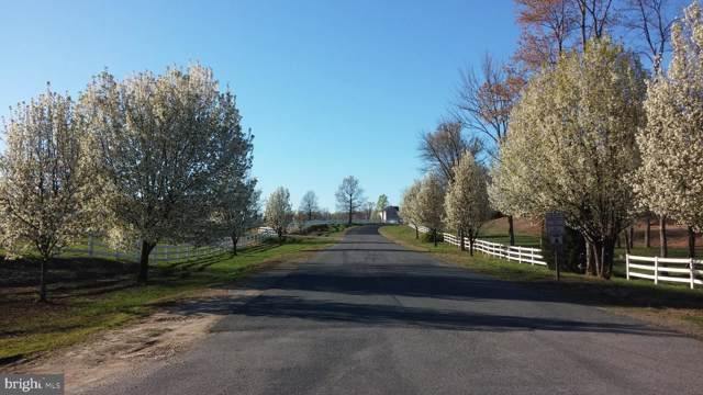 Whelan Way, PARTLOW, VA 22534 (#VASP218162) :: RE/MAX Cornerstone Realty