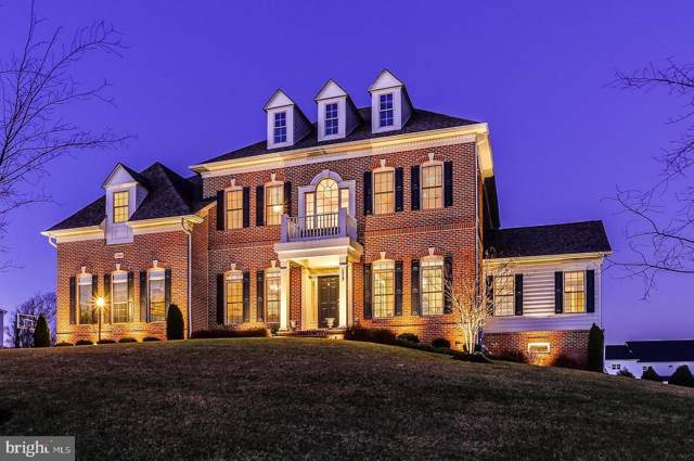12194 Hayland Farm Way, ELLICOTT CITY, MD 21042 (#MDHW273386) :: Revol Real Estate
