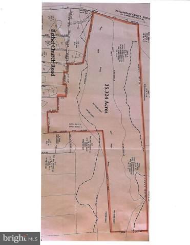 25.3 Acres Passapatanzy Drive, FREDERICKSBURG, VA 22405 (#VAST217142) :: Gail Nyman Group