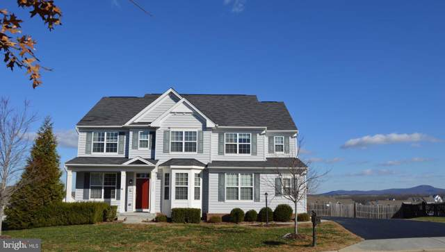 43132 Butterfly Way, LEESBURG, VA 20176 (#VALO399850) :: Seleme Homes