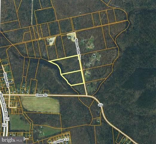 N Narrow Path Way, BOWLING GREEN, VA 22427 (#VACV121310) :: AJ Team Realty