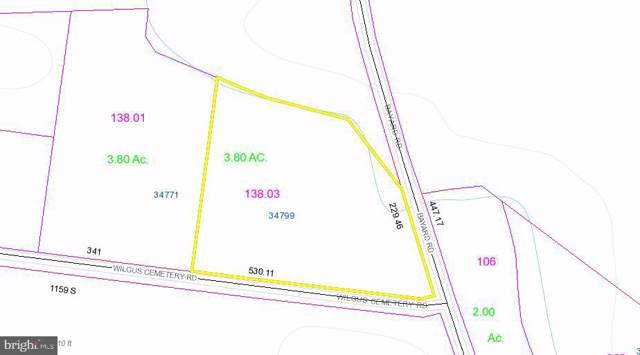 34799 Wilgus Cemetery Road, FRANKFORD, DE 19945 (#DESU152650) :: Barrows and Associates