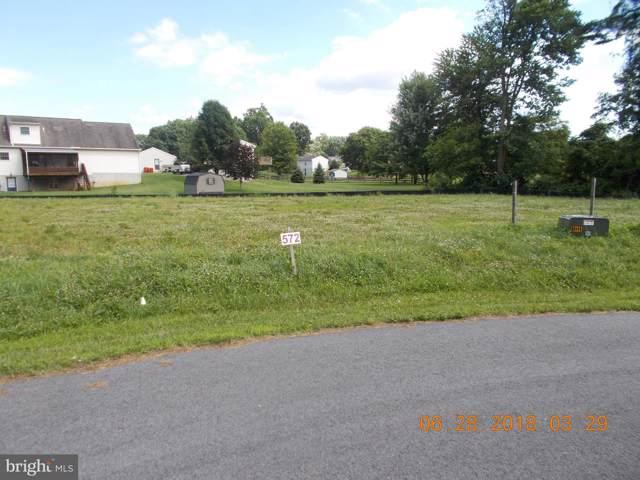 10843 Hershey Drive, WILLIAMSPORT, MD 21795 (#MDWA169554) :: The Miller Team