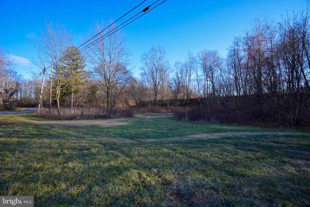 4 Lumber Lane, NEW RINGGOLD, PA 17960 (#PASK128970) :: The Joy Daniels Real Estate Group