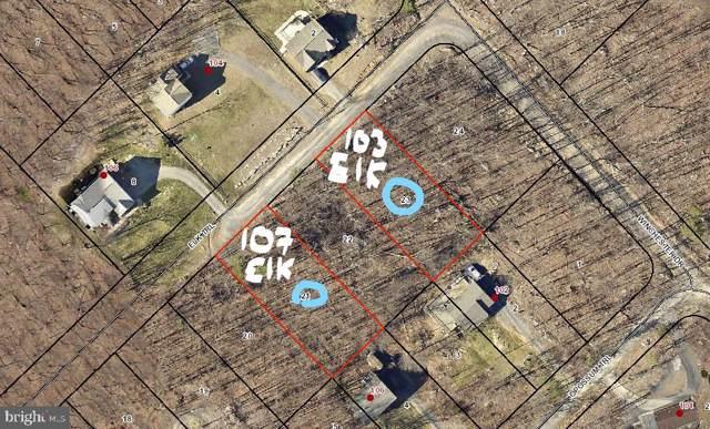 103 Elk Trail, WINCHESTER, VA 22602 (#VAFV154726) :: Bob Lucido Team of Keller Williams Integrity
