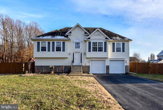 54 Falling Leaf Lane, MAGNOLIA, DE 19962 (#DEKT234634) :: The Allison Stine Team