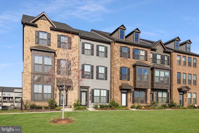 22436 Morning Shade Terrace, ASHBURN, VA 20148 (#VALO400352) :: The Miller Team