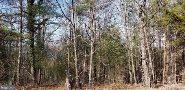 Supinlick Ridge Road, BASYE, VA 22810 (#VASH118026) :: Pearson Smith Realty