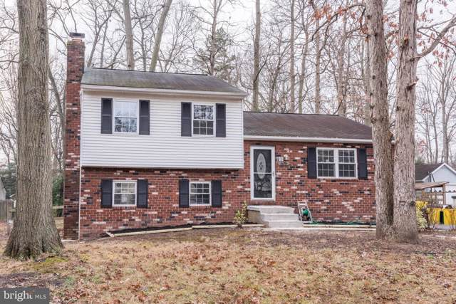 675 D Street, PASADENA, MD 21122 (#MDAA421298) :: The Dailey Group