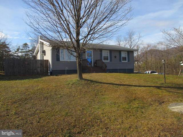742 Fountainhead Drive, KEYSER, WV 26726 (#WVMI110800) :: Viva the Life Properties