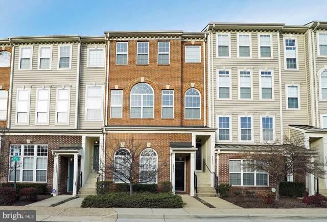 42217 Terrazzo Terrace, ALDIE, VA 20105 (#VALO400516) :: Pearson Smith Realty