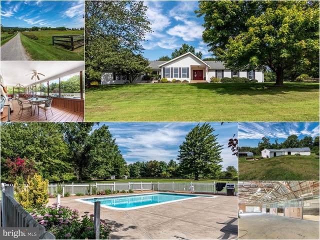 34994 Williams Gap Road, ROUND HILL, VA 20141 (#VALO400542) :: Viva the Life Properties