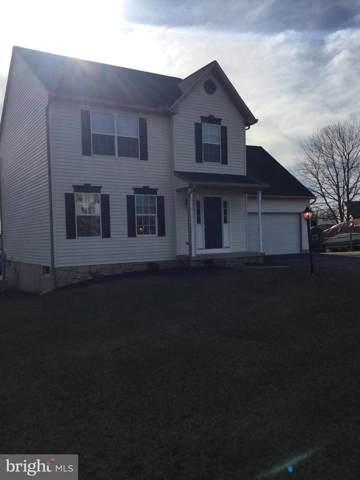 3 Saddlebrook Drive, FELTON, PA 17322 (#PAYK130664) :: The Joy Daniels Real Estate Group